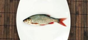 150107-fish-fukushima-v-andreasf--universalpictures-t-618x286